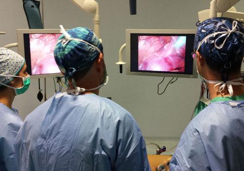 cualquier urólogo en los Estados Unidos realiza la extirpación laparoscópica de próstata por prostat