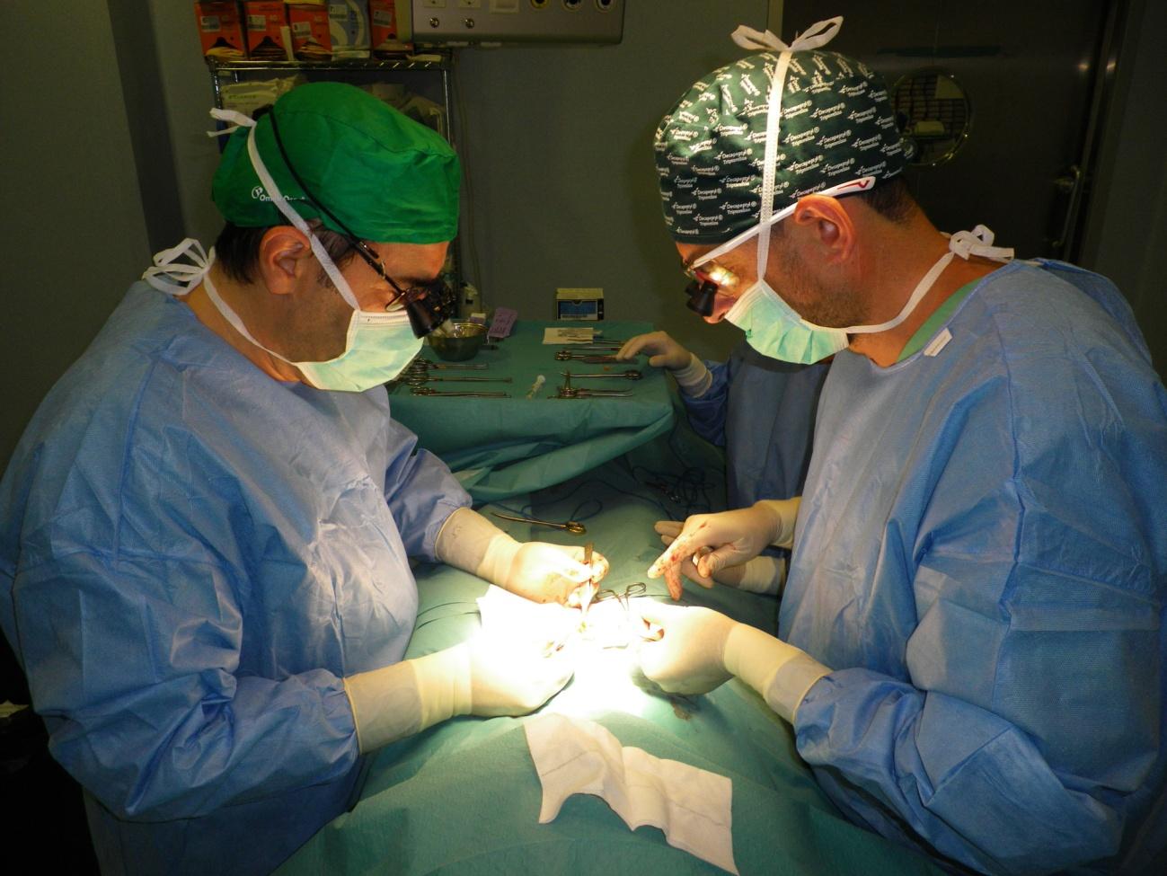 Dr. Gómez Pascual (a la derecha) y Dr. Antuña Calle (a la izquierda) realizando una vaso-vasostomía y biopsia testicular simultánea a un paciente en Hospital Quirón Málaga.