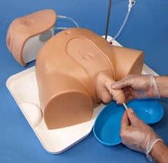 Figura 6: Simulación de un sondaje urinario en un varón